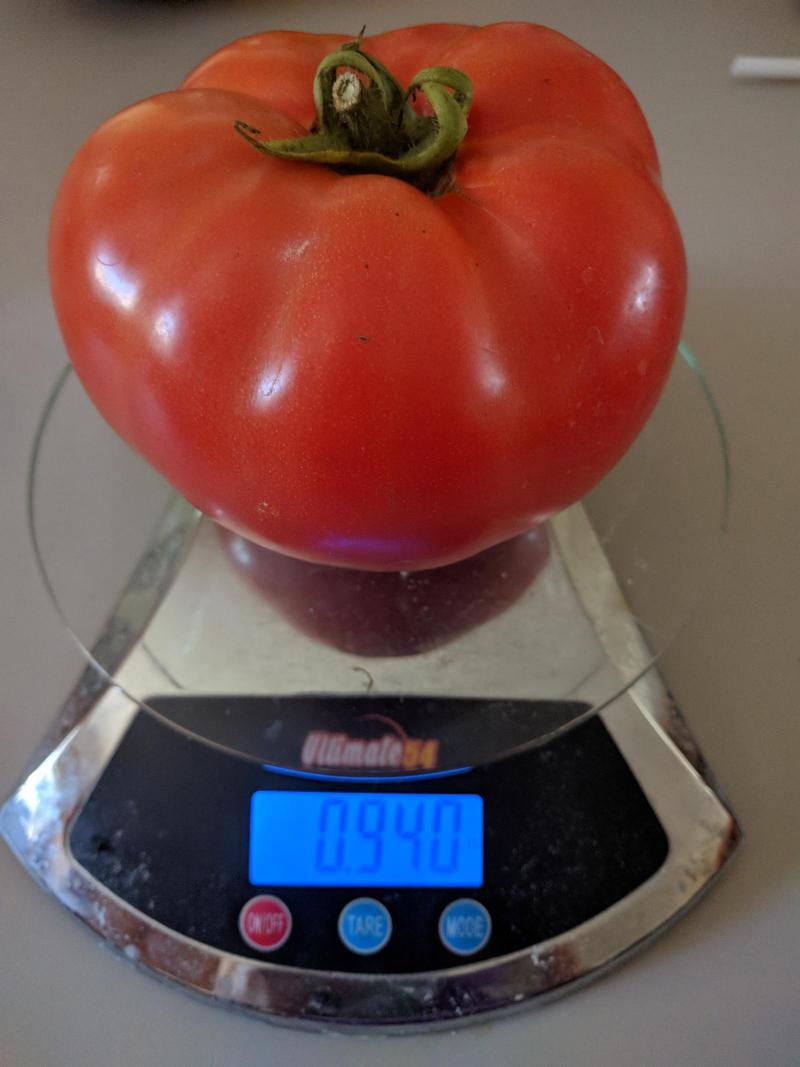 a large red tomato on a kitchen scale