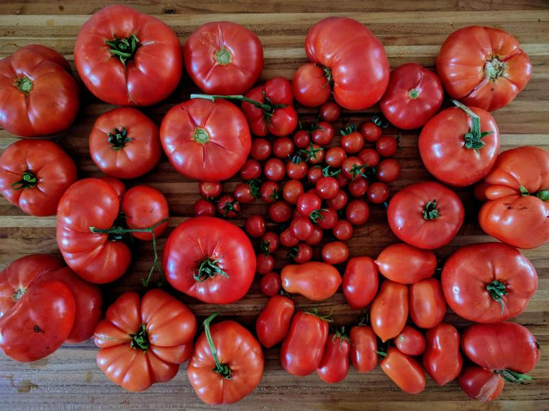 red tomatoes of all sizes on a wooden cutting board